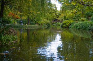 Botanic Garden Fort Worth