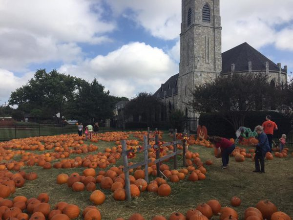 pumkin patch St.James