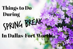 Free or Cheap Things to Do During Spring Break in Dallas and Fort Worth